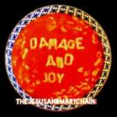 CD Damage and Joy Jesus & Mary Chain