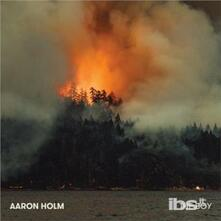 Boy - CD Audio di Aaron Holm