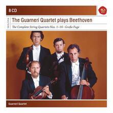 The Guarneri Quartet Plays Beethoven - CD Audio di Ludwig van Beethoven,Guarneri Quartet