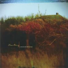A Dimension Reflected - CD Audio di Time Being