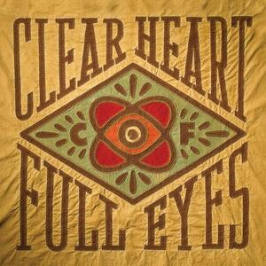 Clear Heart Full Eyes - Vinile LP di Craig Finn
