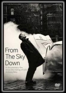 U2. From The Sky Down (DVD) - DVD di U2