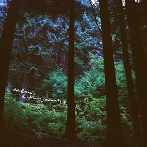 Stein & Mari's Daydream Community - Vinile LP di Mari Kvien Brunvoll,Stein Urheim