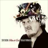 CD Black Cat Zucchero