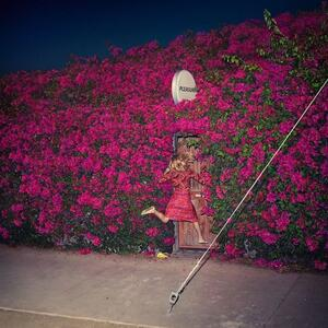 Pleasure - Vinile LP di Feist