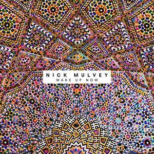 Wake Up Now - Vinile LP di Nick Mulvey