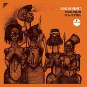Vinile Your Queen Is a Reptile Sons of Kemet