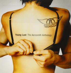 Young Lust: The Aerosmith Anthology - CD Audio di Aerosmith