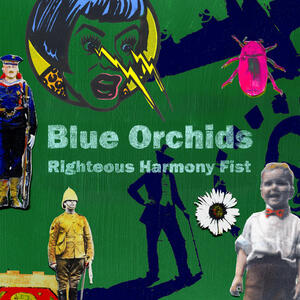 Righteous Harmony Fist - CD Audio di Blue Orchids