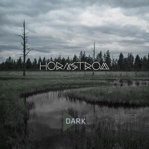 Dark - CD Audio di Hornstrom