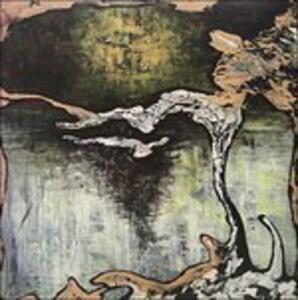 Terra - Vinile LP di Julian Lynch