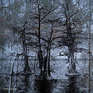 Nansemond - Vinile LP di Nathan Bowles