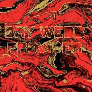 Provider - CD Audio di Bry Webb