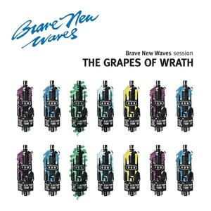 Brave New Waves Session - CD Audio di Grapes of Wrath