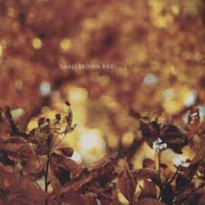 Fell & Found - Vinile LP di Small Brown Bike