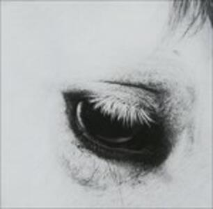 Horse Heaven - CD Audio di Creepoid