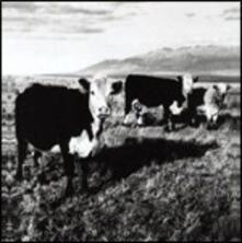Finally LP - CD Audio di Mark Kozelek