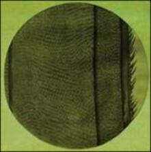 The Ring of the Rise - CD Audio di Micah Blue Smaldone