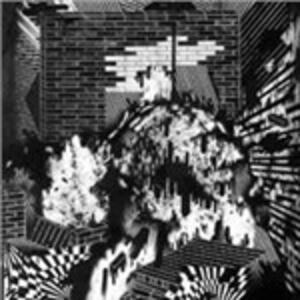 Public Housing - Vinile LP di Gross Ghost