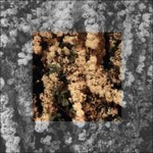 Drown - Vinile LP di Cleared