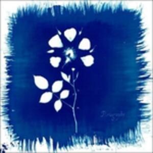 Floriography - Vinile LP di Painted Zeros