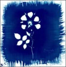 Floriography - CD Audio di Painted Zeros