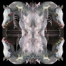 Rip Chrysalis - CD Audio di Eartheater