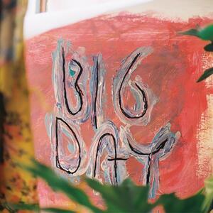 Big Day - Vinile LP di Loose Tooth