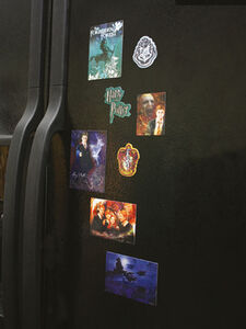 Idee regalo Magneti Harry Potter. Ordine della Fenice (Order of the Phoenix) CID