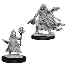 Pathfinder. Deep Cuts Miniatures. Evil Wizards