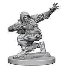 Pathfinder. Deep Cuts Miniatures. Human Male Rogue