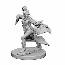 Pathfinder. Deep Cuts Miniatures. Elf Female Sorcerer