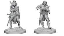 Pathfinder Dcum Elf Female Bard
