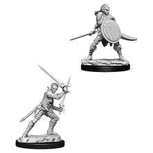 Pathfinder. Deep Cuts Miniatures. Elf Female Fighter