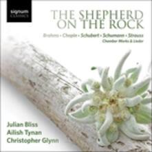 Shepherd On The Rock - CD Audio di Julian Bliss