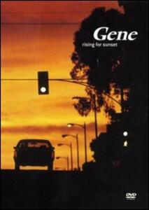 Gene. Rising for Sunset - DVD