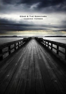 Film Echo & The Bunnymen. Dancing Horses