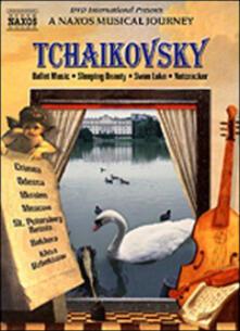 Pyotr Ilyich Tchaikovsky. Symphony No. 6. A Naxos Musical Journey (DVD) - DVD di Pyotr Ilyich Tchaikovsky,Antoni Wit