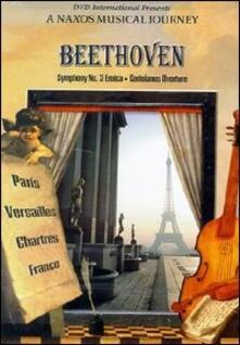 Ludwig Van Beethoven. Symphony No. 3 Eroica. A Naxos Musica Journey (DVD) - DVD di Ludwig van Beethoven,Michael Halasz