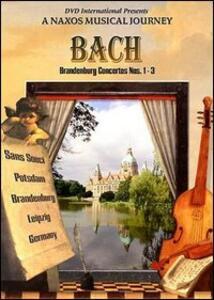 Johann Sebastian Bach. Concerto Brandeburghese n.1 BWV 1046 - DVD