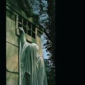 Within the Realm of a Dying Su - Vinile LP di Dead Can Dance