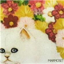 Today it's You - CD Audio di Marmoset