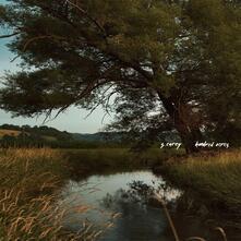 Hundred Acres - CD Audio di S. Carey