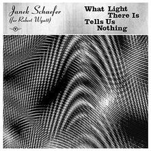 What Light There Is Tells Us Nothing - CD Audio di Janek Schaefer