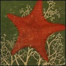 Arm of Starfish - CD Audio di Blithe Sons