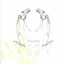 Tear it Down - CD Audio di My Brightest Diamond