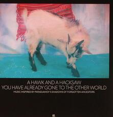 You Have Already Gone to the Other World - CD Audio di A Hawk and a Hacksaw