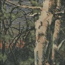 Asleep Many Years In The - CD Audio di Anomoanon