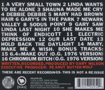 Mary Had Brown Hair - CD Audio di Gary Wilson - 2