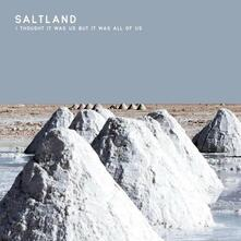 I Thought it Was Us but it Was All of Us - Vinile LP di Saltland